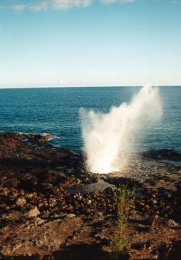 Ocean Blow Hole