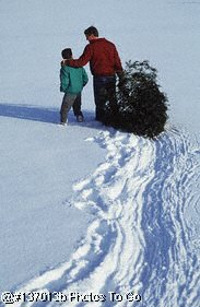 Father & son with freshly cut Christmas tree