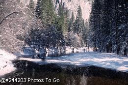 Yosemite-Ice covered pond