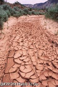 Dry stream bed, Utah